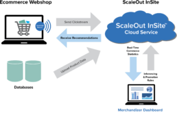How ScaleOut InSite Works